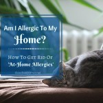 "What You Can Do To Help Stop ""At-Home Allergies"""