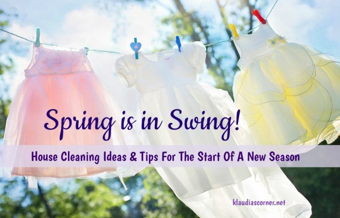 House Cleaning Ideas
