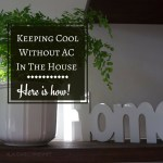 Keeping Cool Without Air Conditioning In The House – Here Is How!