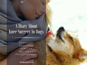 My Dog Is Limping - What's Wrong? A Diary About Knee Surgery In Dogs