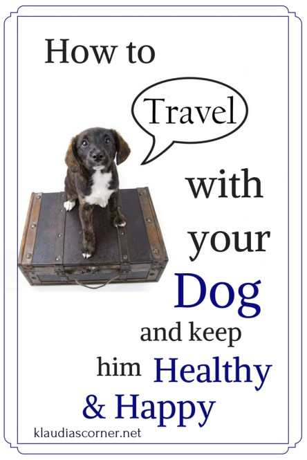 How to Travel With A Dog And Keep Him Healthy & Happy