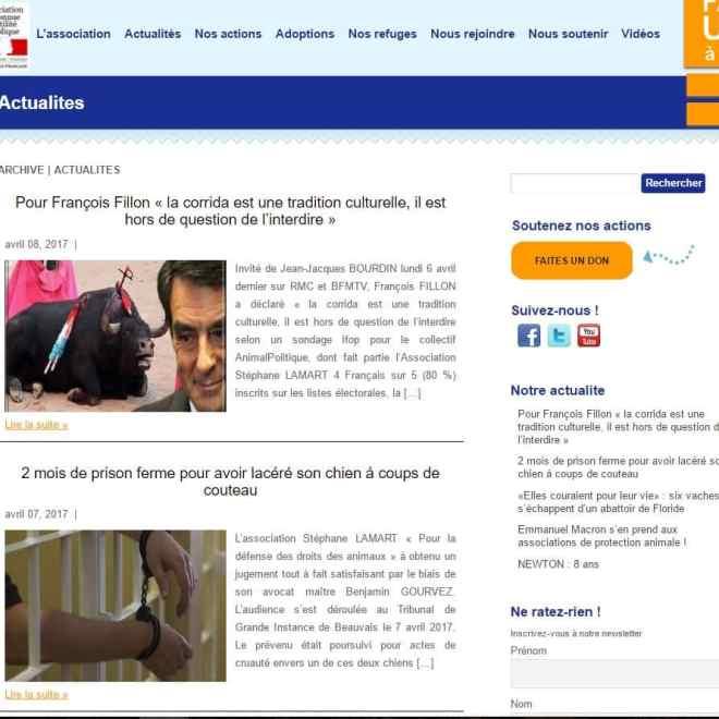 http://Refonte%20de%20site%20Association-Stéphane-Lamart-2