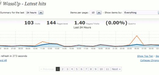 screenshot WassUp statistiche in tempo reale per WordPress