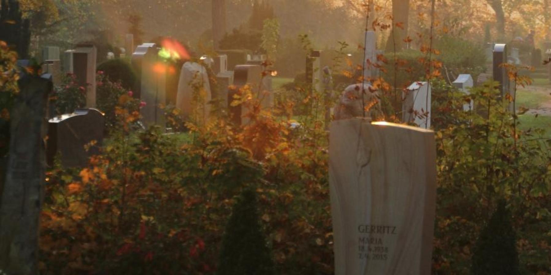17 Grabarten auf Lauheide