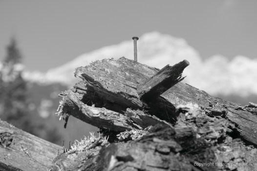 Dachbalken mit Nagel
