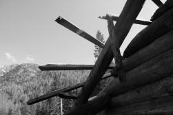 Dachsparren
