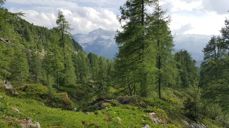 Welch herrliche Landschaft!