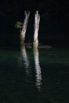 Alte Pfosten eines ehemaligen Steges spiegeln sich im See