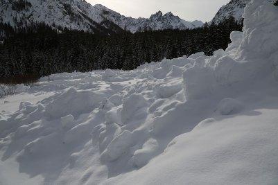 Blick über die Lawine hinweg zum Palfelhorn