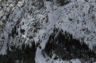 Lawinenrinne an der Bergflanke, Watzmann