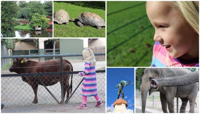 Hamburgs wildes Herz – der Tierpark Hagenbeck
