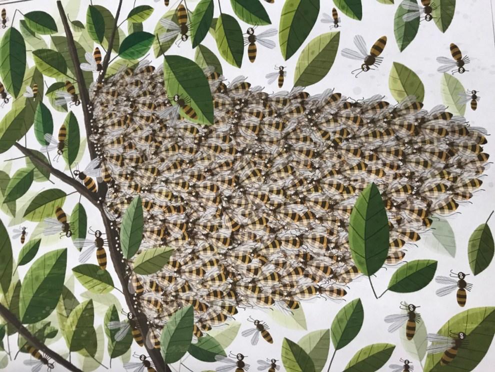 Bienen von Piotr Socha