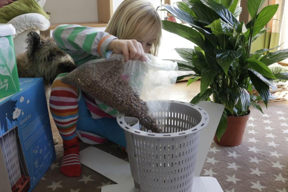 Mädchen pflanzt Topfpflanze ein