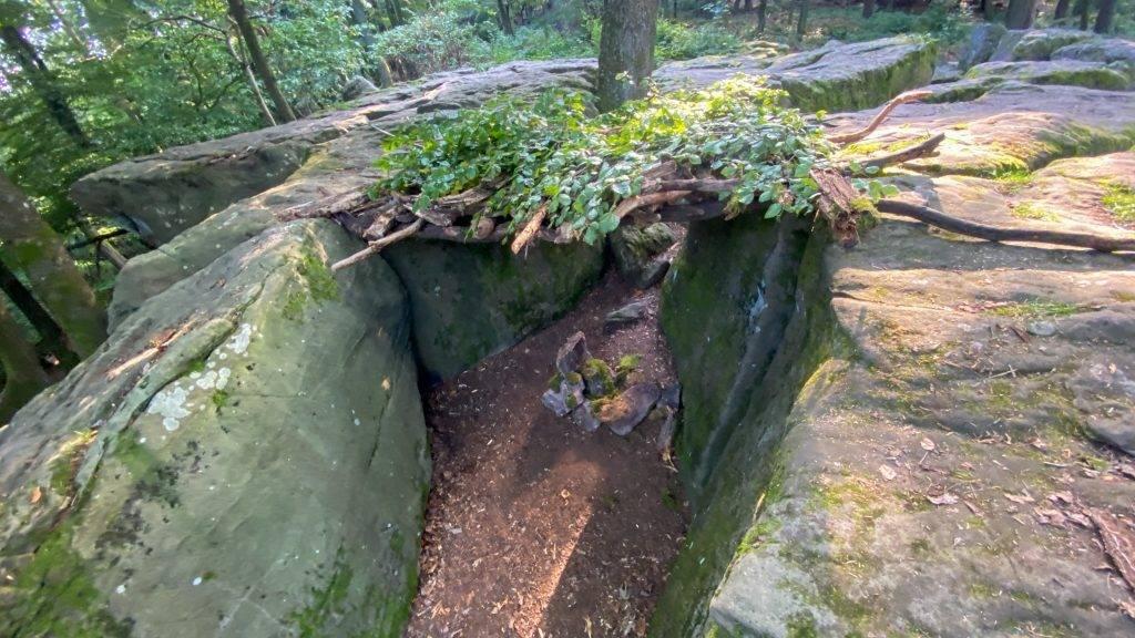 Überblick Felsenmeer Pfälzerwald
