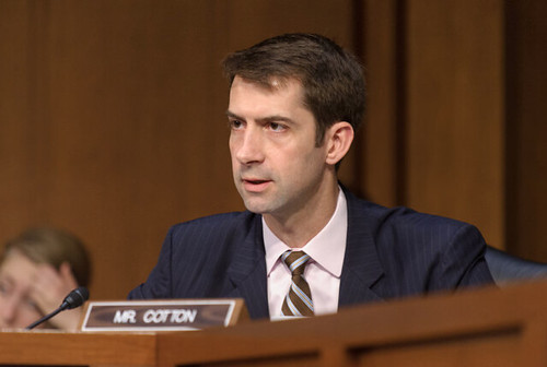 Cotton Urges Apple to Work With FBI on Pensacola Shooting