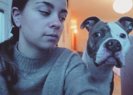 Hundpsykolog Göteborg