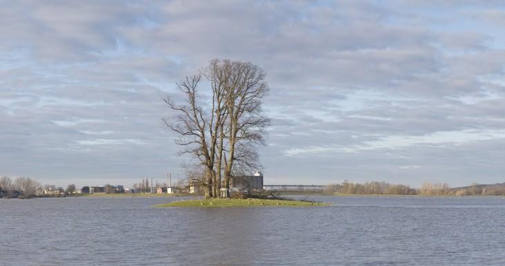 Reiner Rhein (Foto © Kleinendonk)