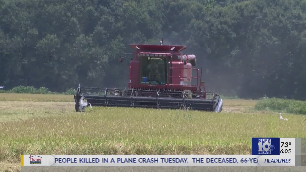 Partial government shutdown's impact on farmers