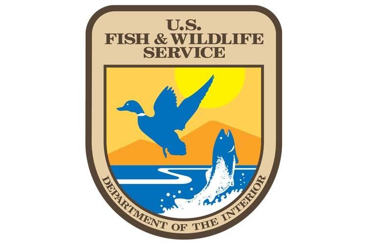 Wildlife Service_1559860990650.jpg.jpg
