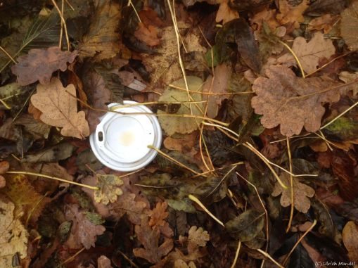 Coffée To Go: Cup and lid in the nature