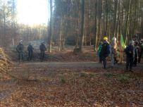 Drei Männlein stehn' im Walde... - Danneröder Wald am 30.11.2020 (C) Uli Mandel