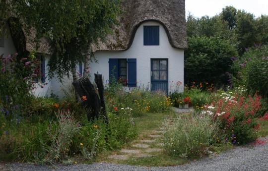 Beispiel für einen natürlichen Garten. Quelle: https://www.facebook.com/GaertenDesGrauens/