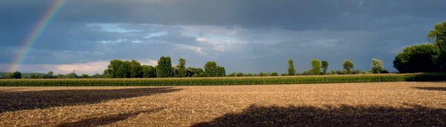 Weetfelder Landschaft (C) weetfeld.de