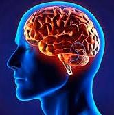 Los alimentos que más dañan tu cerebro