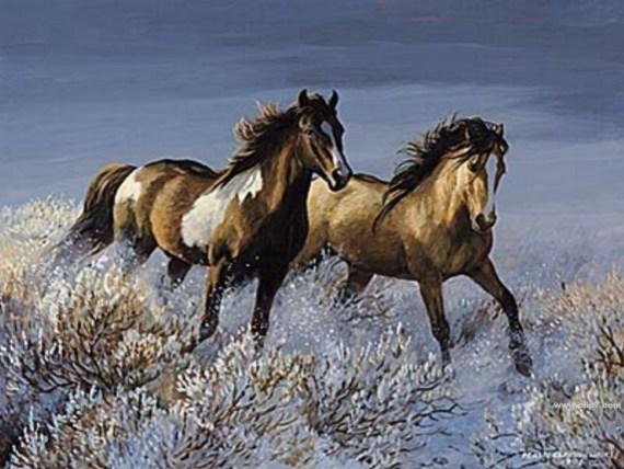 Imagenes de caballos corriendo en la nieve