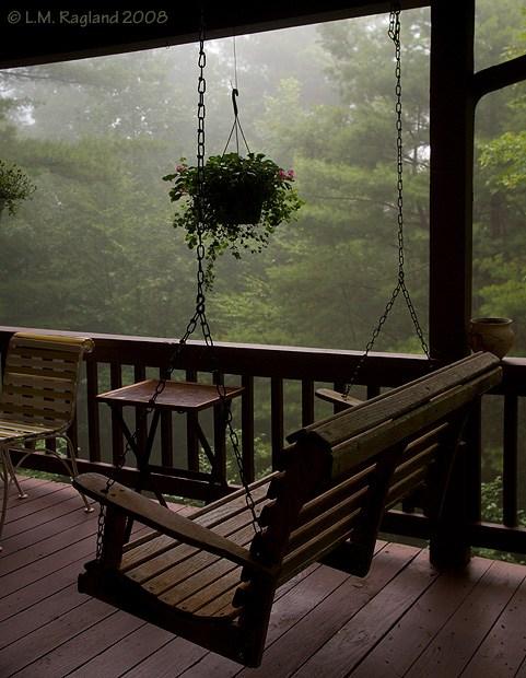 imagen de terraza en bosque brumoso