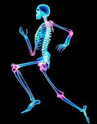 Salud ósea: consejos para mantener los huesos sanos