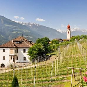 Ausblick vom Klostergut
