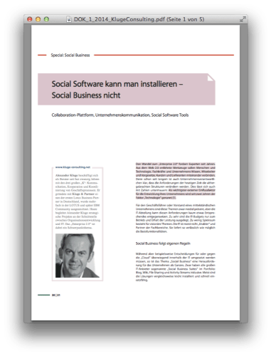Dok Magazin Social Business Kluge Consulting