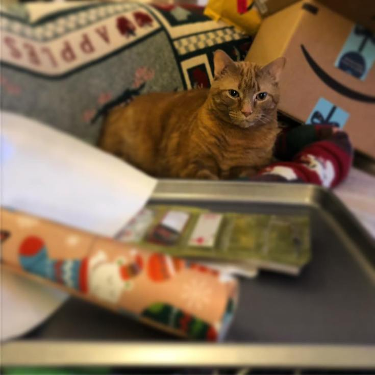 Ely is very helpful with wrapping