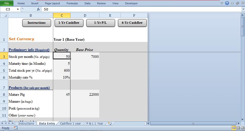 data entry tab - cash flow statement
