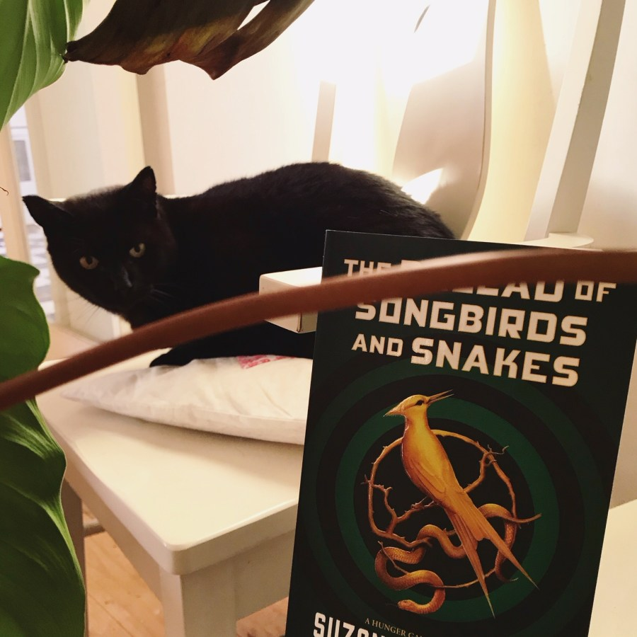 The Ballad of Songbirds and Snakes Review - The Hunger Games Prequel