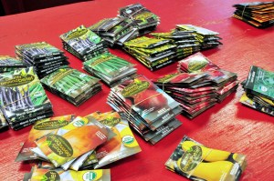 """New Castle Seed Sort, Distribution and """"Gardening Basics Workshop @ New Castle Branch Library 