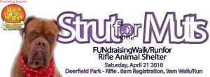 Strut for Mutts 2018 @ Deerfield Park  | Rifle | Colorado | United States