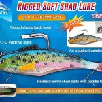 Rigged soft shad lure for sea bass fishing bait