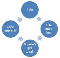 A vicious cycle of knee arthritis symptoms