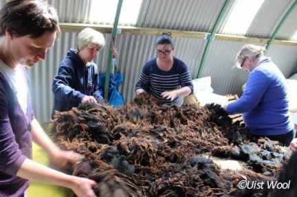 CALANAS trainees Image: Uist wool
