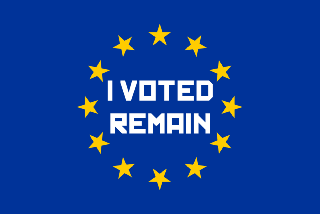 I VOTED REMAIN