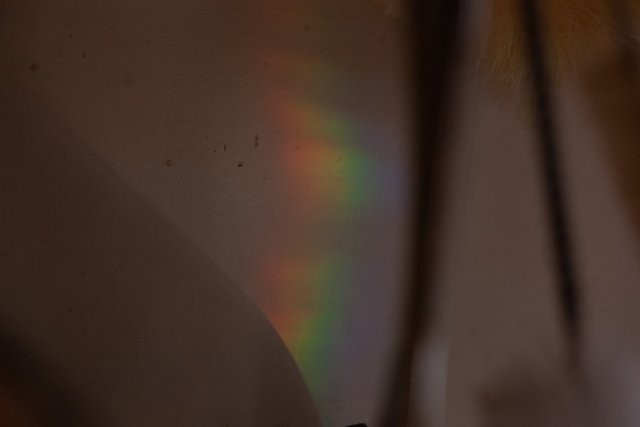 A rainbow on the wall, the result of sunlight and a prism placed in the sink