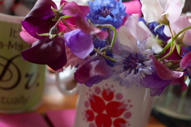 A glorious profusion of Sweet peas mixed with Cornflowers in a wee jug on the living room table