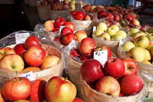 11nysswf_apple_large