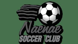 Naenae Soccer Club New Zealand