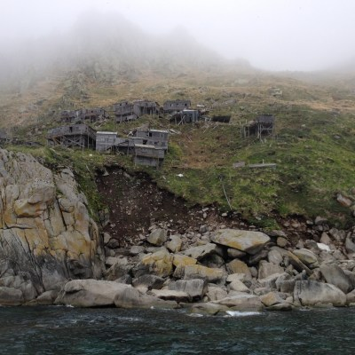 Craggy, grassy island cliff and shoreline, wrapped in mist