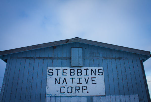 Stebbins Native Story