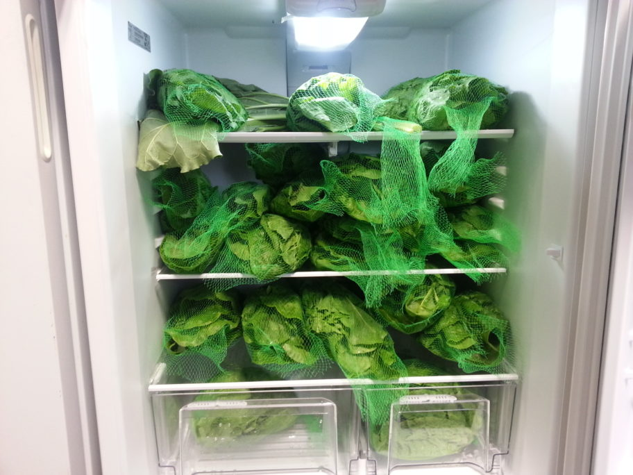 Vegetables in one-pound bags ready for sale. Photo Credit: Davis Hovey, KNOM (2017)