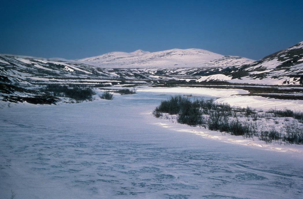 A wintery scene of the Kisaralik River, with a frozen river and snow-covered mountain in the background